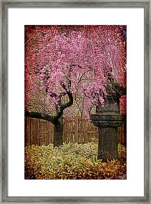 Asian Spring Framed Print by Chris Lord