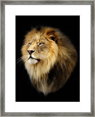 Aslan Framed Print by Julie L Hoddinott