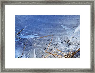 At The Edge Framed Print by Bill Morgenstern