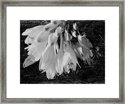 At The End Framed Print by Wild Thing