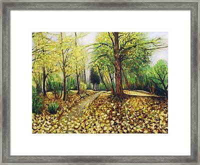 Autumn Alley Framed Print by Vladimir Kezerashvili