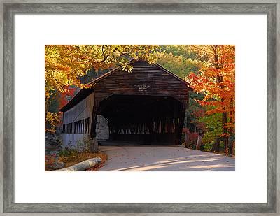Autumn Bridge Framed Print by William Carroll