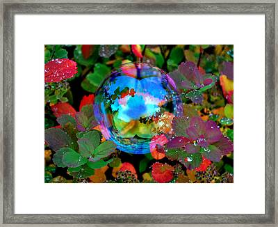 Autumn Bubble Framed Print