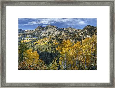 Autumn Colors In The Wasatch Mountains Framed Print