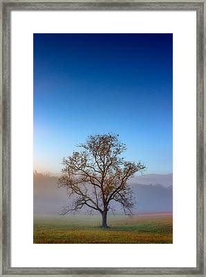 Autumn Glow Framed Print by Rick Berk