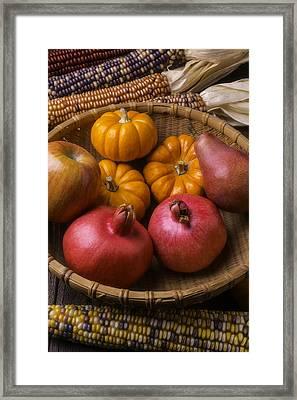 Autumn Harvest Basket  Framed Print