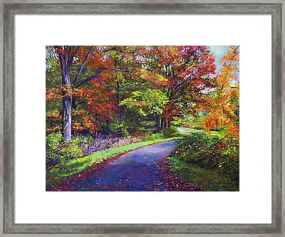 Autumn Leaf Road Framed Print