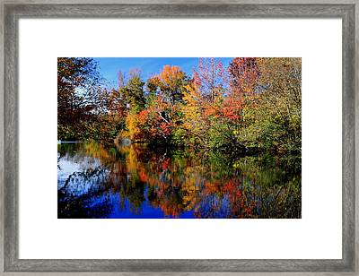 Autumn Pond Framed Print by Gary Bydlo