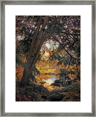 Autumn Preview Framed Print