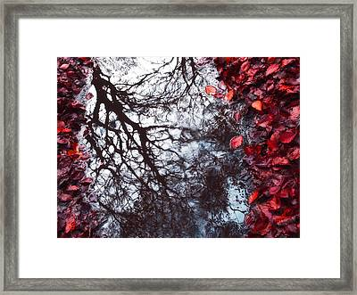 Autumn Reflections II Framed Print by Artecco Fine Art Photography
