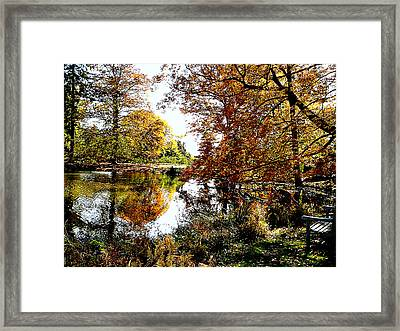 Autumn Reflections Framed Print by Susan Savad