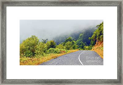 Autumn Road Framed Print by Svetlana Sewell