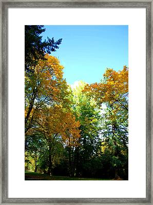 Autumn Framed Print by Sergey and Svetlana Nassyrov