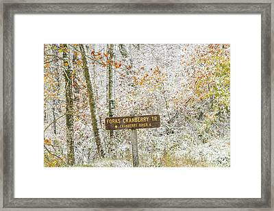 Autumn Snow Cranberry Wilderness Framed Print