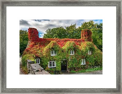 Autumn Tea House Framed Print by Adrian Evans