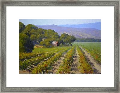 Autumn Vines Framed Print