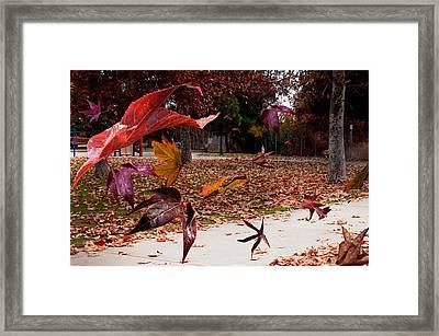 Autumn Wind Framed Print by Richard Gordon