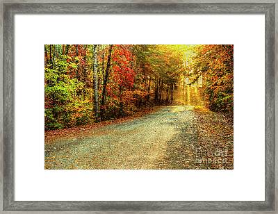 Autumns Path Framed Print