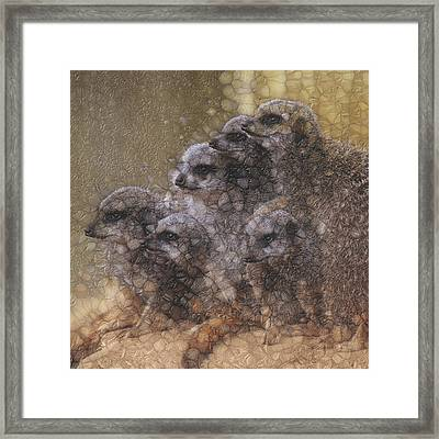 Aware Framed Print
