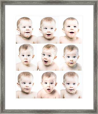 Baby Faces Framed Print by Diane Diederich
