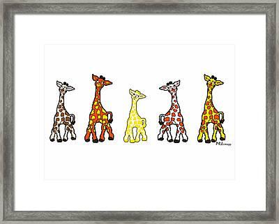 Baby Giraffes In A Row Framed Print