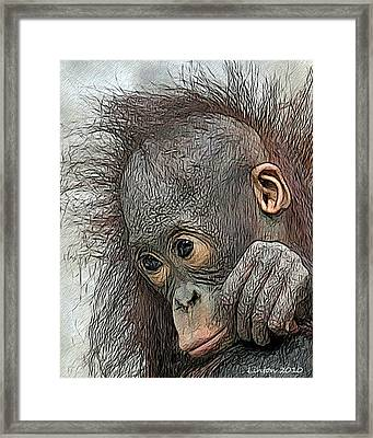 Bad Hair Day Framed Print by Larry Linton