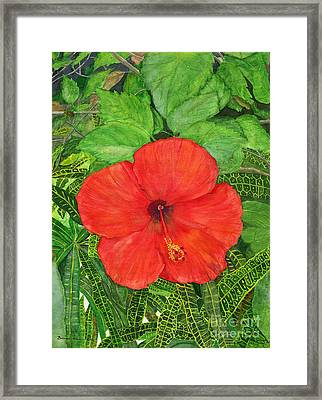 Framed Print featuring the painting Balinese Hibiscus Rosa by Melly Terpening