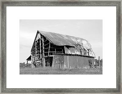 Barn In Kentucky No 75 Framed Print by Dwight Cook