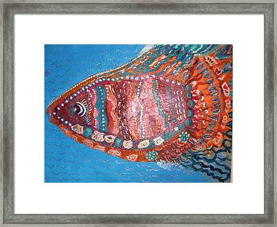Barracuda Lite Framed Print by Anne-Elizabeth Whiteway