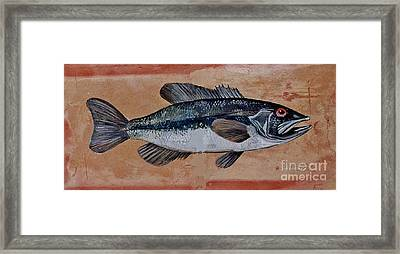 Bass Framed Print by Andrew Drozdowicz