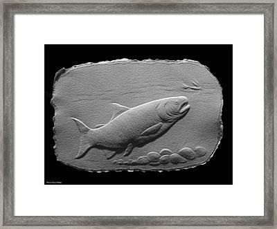 Bass Fish Framed Print by Suhas Tavkar