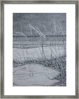 Beach Grass Framed Print
