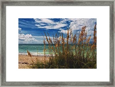 Beach Grass II Framed Print