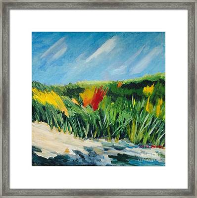 Beach Grass Framed Print by Stella Sherman