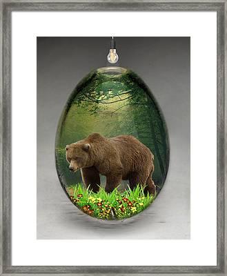 Bear Art Framed Print by Marvin Blaine