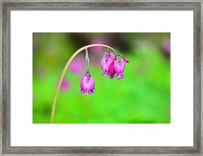 Beautiful Hearts Framed Print by Jeff Swan