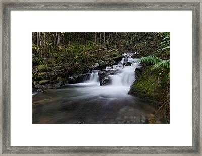 Beautiful Pools Framed Print