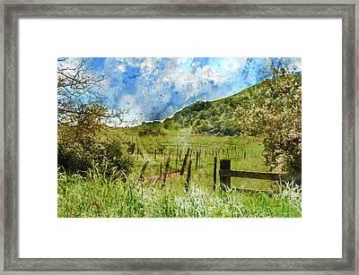 Beautiful Vineyard In Napa Valley Framed Print by Brandon Bourdages