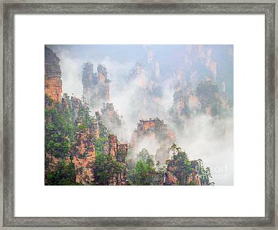 Beauty In Nature Framed Print by PuiYuen Ng