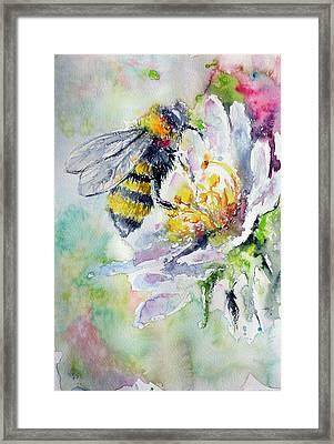 Bee On Flower Framed Print by Kovacs Anna Brigitta