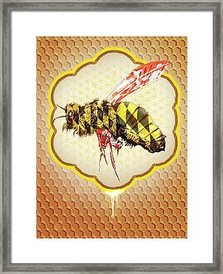 Beemore Framed Print by Will Shanklin