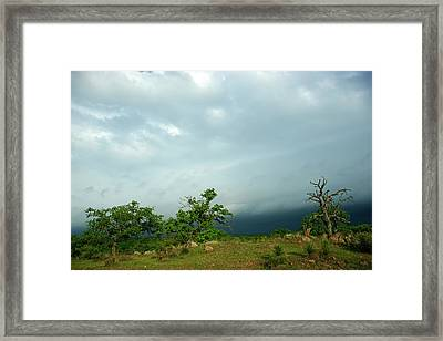 Before The Storm Framed Print by Bill Morgenstern