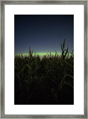 Behind The Rows Framed Print