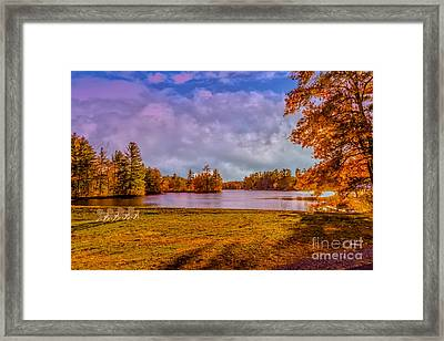 Best Seats In Town Framed Print