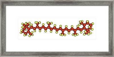 Beta-carotene Molecular Model Framed Print