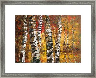 Birch Trees In Golden Fall Framed Print by Ylli Haruni