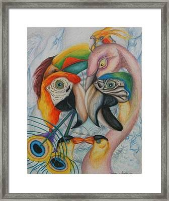 Birds  Framed Print by Andrea  Darlington