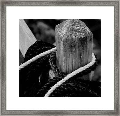 Framed Print featuring the photograph Black And White by Corinne Rhode