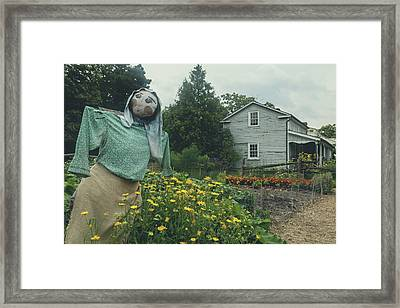 Black Creek Pioneer Village - Canada Framed Print