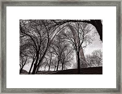 Blending In Framed Print